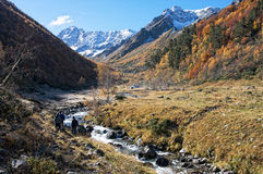 El ir de excursión en el valle de la montaña del otoño Fotos de archivo libres de regalías