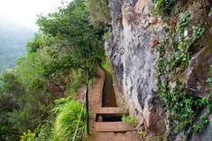 El ir de excursión en Madeira Foto de archivo