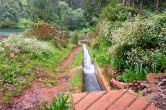 El ir de excursión en Madeira Imagen de archivo libre de regalías
