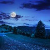 El ir a la naturaleza en la noche Imagenes de archivo