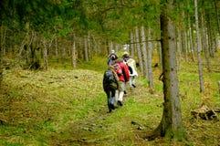 El ir para arriba colina Foto de archivo libre de regalías