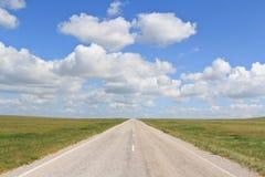 El ir recto de la carretera de asfalto más allá del horizonte Fotografía de archivo libre de regalías