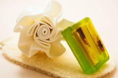 El jabón de la esponja del cuerpo del primer y friega el guante Imágenes de archivo libres de regalías