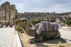 El-Jam, colosseum, Tunisia Stock Images