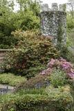 El jardín Foto de archivo libre de regalías