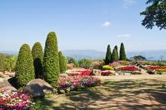 El jardín beautyful y el cielo azul Imagenes de archivo