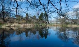El jardín botánico de Copenhague Fotos de archivo
