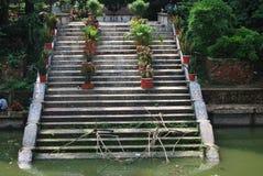 El jardín de Baldha es uno de los jardines botánicos más viejos de Bangladesh El jardín se enriquece con la especie rara de la pl Foto de archivo libre de regalías
