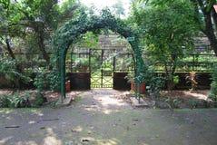 El jardín de Baldha es uno de los jardines botánicos más viejos de Bangladesh El jardín se enriquece con la especie rara de la pl fotos de archivo libres de regalías