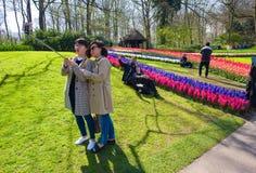 El jardín de flores del keukenhof Fotografía de archivo libre de regalías