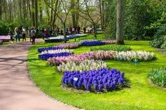 El jardín de flores del keukenhof Foto de archivo
