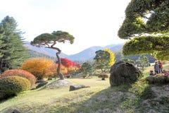 El jardín de la calma de la mañana Imágenes de archivo libres de regalías