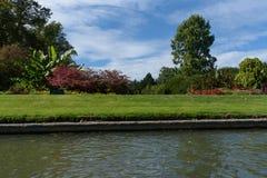 El jardín de las personas en Clare College, Cambridge vio del río foto de archivo