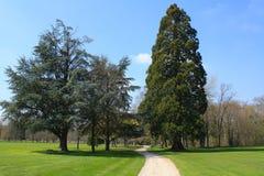 El jardín del castillo de Cheverny foto de archivo