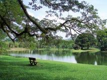 El jardín del lago, Taiping Imagenes de archivo