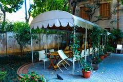 El jardín en el Brasil subió a casa foto de archivo