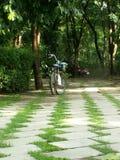 el jardín es somdajpranangjaosirikit Fotos de archivo libres de regalías