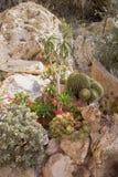El jardín exótico de Mónaco Fotos de archivo libres de regalías