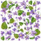 El jardín florece el fondo watercolor Fotografía de archivo libre de regalías