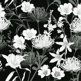 El jardín floreciente botánico trasero y blanco monótono florece el unfin ilustración del vector