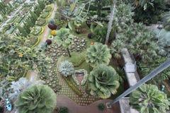 El jardín hermoso Foto de archivo