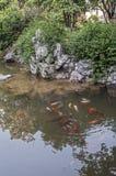 El jardín humilde en Suzhou - un poema del ` s del administrador de flores, Fotografía de archivo