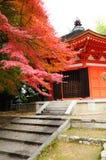 El jardín japonés es en otoño imagen de archivo