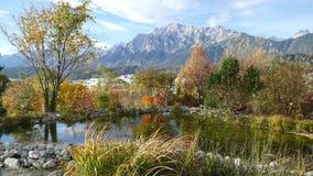 El jardín más asombroso de las montañas Foto de archivo libre de regalías