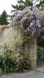 El jardín secreto Fotografía de archivo libre de regalías