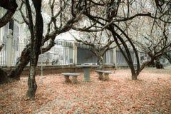 El jardín surrealista para el amante Imagenes de archivo