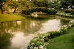 El jardín verde con la salida del sol Imágenes de archivo libres de regalías