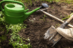 El jardinero cava la tierra para los almácigos Fotografía de archivo