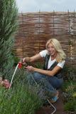 El jardinero de la mujer Fotografía de archivo