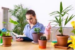 El jardinero de sexo femenino joven con las plantas dentro fotografía de archivo