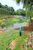 El jardinero en parque riega las flores Imágenes de archivo libres de regalías