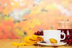 El jarro y la taza con salud beben del salvaje subieron en las hojas de otoño del abackground o Fotos de archivo