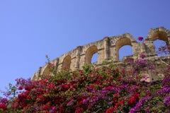 El Jem Colosseum och kulöra bougainvilleavinrankor Royaltyfria Foton