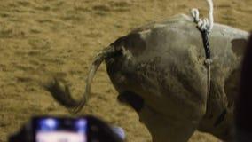 El jinete de Bull monta un toro almacen de video