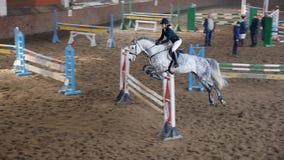 El jinete de la muchacha del caballo salta sobre obstáculo en la cámara lenta almacen de video
