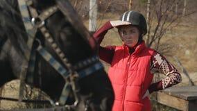 El jinete de la mujer está mirando en el caballo que se coloca al lado del animal ungulado nacional con el arnés almacen de video
