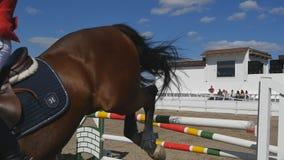 El jinete de sexo femenino profesional irreconocible monta a caballo El caballo es galopante y de salto a través de una barrera a metrajes
