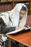 El judío ortodoxo aprende Torah Imagen de archivo libre de regalías
