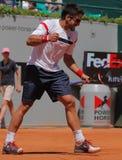 El jugador de tenis de Janko Tipsarevic celebra Foto de archivo libre de regalías
