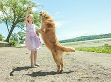 El jugar con el perro Fotos de archivo