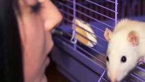 El jugar con la rata blanca almacen de video