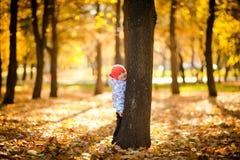 El jugar con leaves_2 Foto de archivo libre de regalías