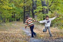 El jugar de los cabritos Fotografía de archivo libre de regalías