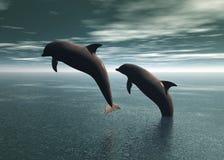 El jugar de los delfínes Imágenes de archivo libres de regalías