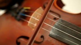 El jugar del violín del Bluegrass almacen de video