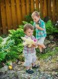 El jugar durante una caza del huevo de Pascua Imagen de archivo